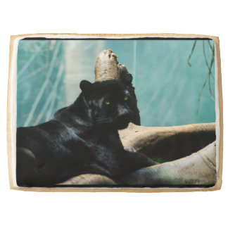 Panther with Piercing Eyes Jumbo Cookie