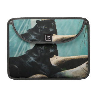 Panther with Piercing Eyes MacBook Pro Sleeves