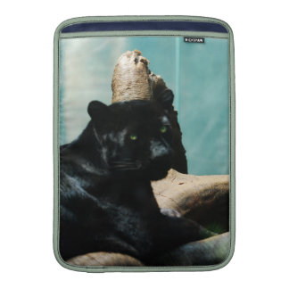 Panther with Piercing Eyes MacBook Sleeve