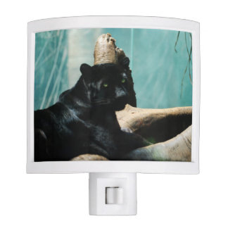 Panther with Piercing Eyes Night Light