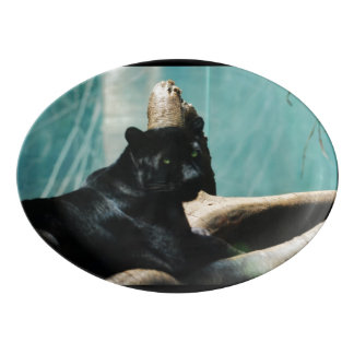 Panther with Piercing Eyes Porcelain Serving Platter