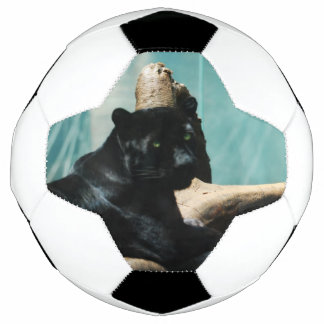 Panther with Piercing Eyes Soccer Ball