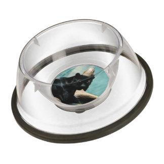 Panther with Piercing Eyes Pet Bowl