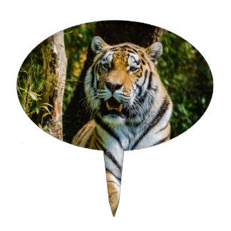 Panthera el Tigris Altaica del tigre de Amur del t Palillos De Tarta