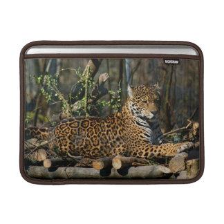 """Panthera Jaguar 13"""" MacBook Sleeve"""