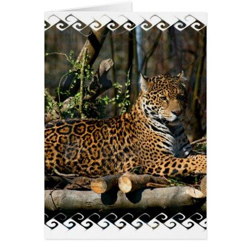 Panthera Jaguar Greeting Card