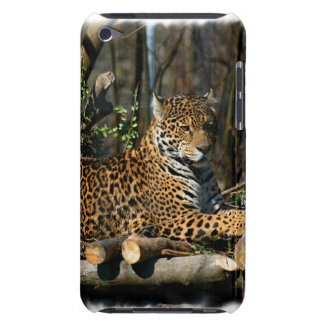 Panthera Jaguar  iTouch Case iPod Touch Case-Mate Case