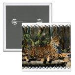 Panthera Jaguar Pin