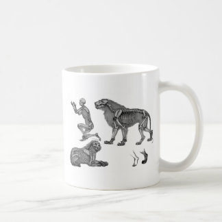 Panthera Leo - Skeleton Lions In Repose Classic White Coffee Mug