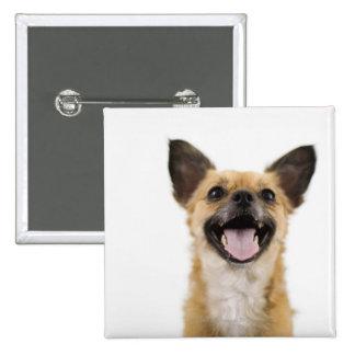 Panting dog button