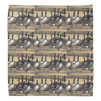 Pañuelo canadiense de los gansos bandanas