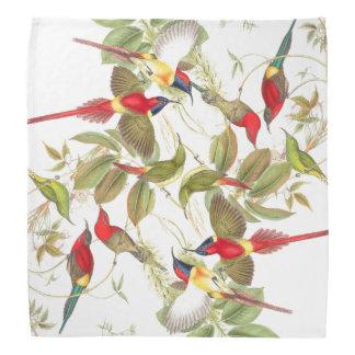 Pañuelo de los pájaros de Gould Sunbird Bandana