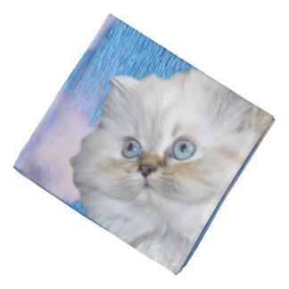 Pañuelo del gato blanco y del agua azul bandanas