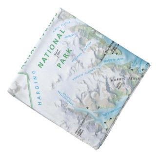 Pañuelo del mapa de la bahía de la resurrección de bandanas