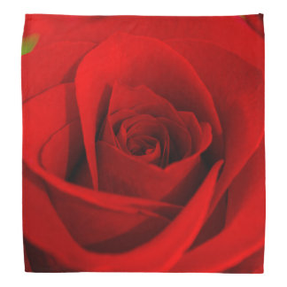 Pañuelo del rosa rojo bandanas