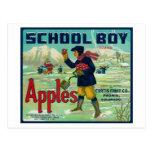 Paonia, Colorado - el escolar Apple etiqueta Postal