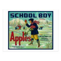 Paonia, Colorado - School Boy Apple Label Postcard