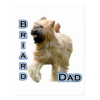 Papá 4 de Briard Postal