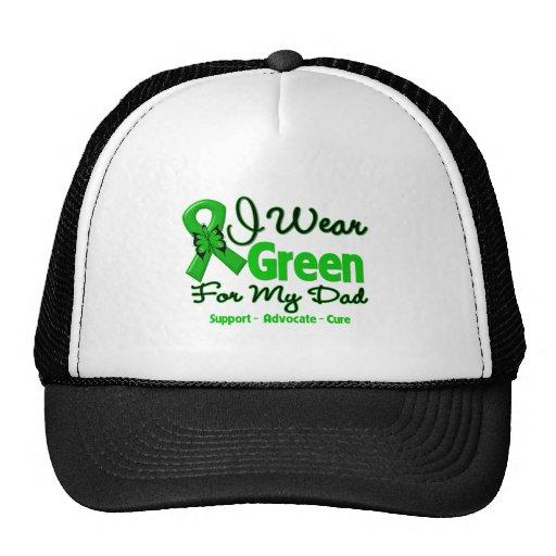 Papá - cinta verde de la conciencia gorros
