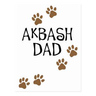 Papá de Akbash Postales