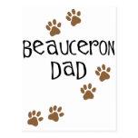 Papá de Beauceron Tarjetas Postales