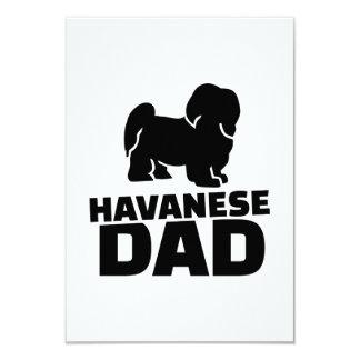Papá de Havanese