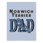 PAPÁ de Norwich Terrier