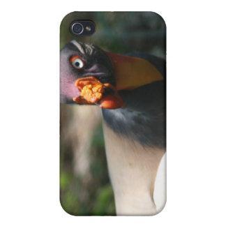 Papá de Sarcoramphus del primer del pájaro de rey  iPhone 4/4S Carcasas
