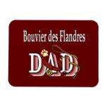 Papá del DES Flandres de Bouvier Imán