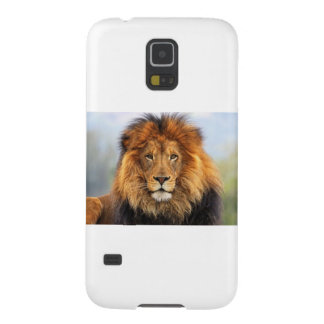 Papa Lion Galaxy S5 Cases
