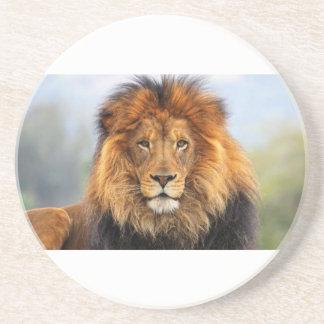 Papa Lion Beverage Coaster