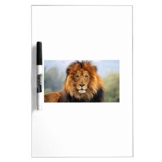 Papa Lion Dry Erase Boards