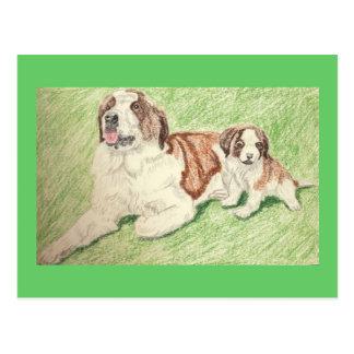 Papa Saint Bernard And His Pup Postcard