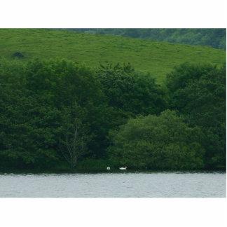 Papada del lago esculturas fotograficas