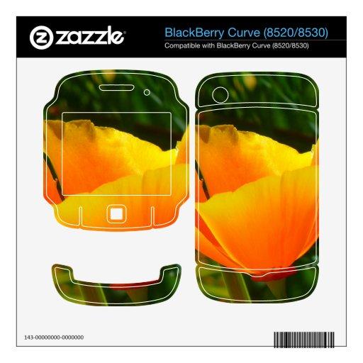 Papaver anaranjado Nudicaule de la amapola de Isla Calcomanías Para BlackBerry