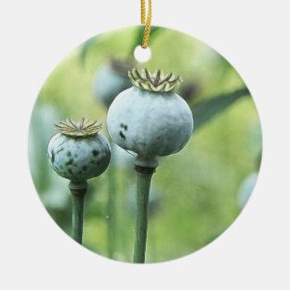 Papaver - cabezas de la semilla del somniferum adorno navideño redondo de cerámica