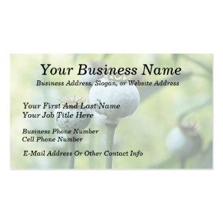Papaver - cabezas de la semilla del somniferum tarjetas de visita