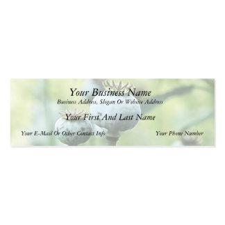 Papaver - cabezas de la semilla del somniferum tarjetas de visita mini