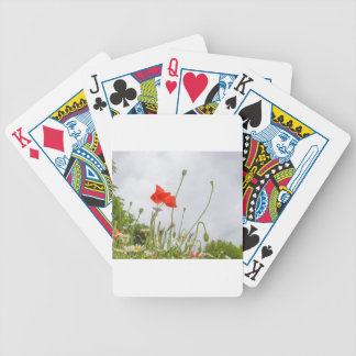 Papaver flower bicycle playing cards