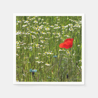 Papaver rhoeas, a red flower paper napkin
