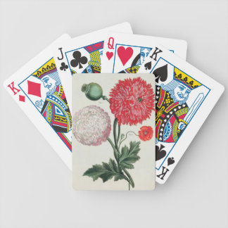 Papaver somniferum and Papaver rheas engraved by G Bicycle Playing Cards