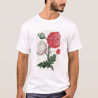 Papaver somniferum and Papaver rheas engraved by G T-Shirt