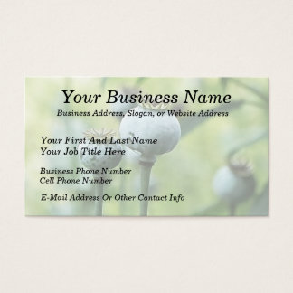 Papaver Somniferum Seed Heads Business Card