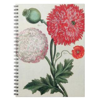 Papaver - somniferum y rheas del Papaver grabados  Spiral Notebooks