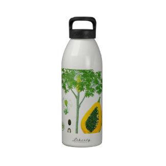 Papaya Botella De Agua Reutilizable