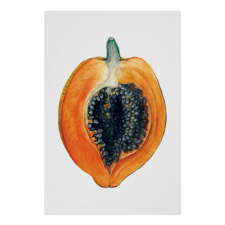 PAPAYA botanical fruit orange print
