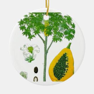 Papaya Ornamentos De Navidad