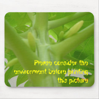Papaya flowers, Please consider the environment... Mouse Pad