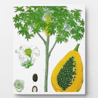 Papaya Placas Con Foto