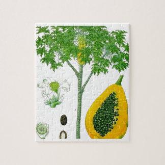 Papaya Puzzle Con Fotos